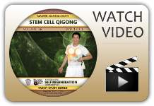 Qigong Workshop Clip